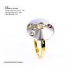 Arteon WG Jewellery, Argyle Diamonds,natural Gold Nuggets, Broome Pearls