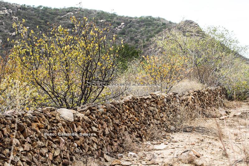 Cerca de Pedra