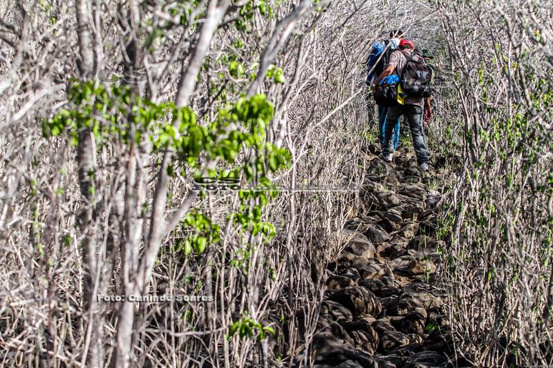 Trilha para o Pico do Cabugi