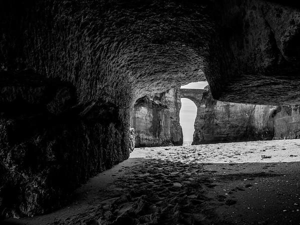 Cave Life