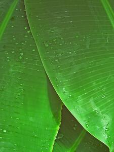 CO 2008 0530 DBG (43)