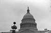 #4 Capitol dome