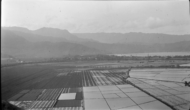 #26-h irrigated farms at base of mountains