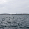 Inishmaan (Inis Meain) .... note breakwater and new harbour to centre of  photo.