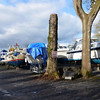 The slipway at Madden's Marina with a slew of boats on the hard.