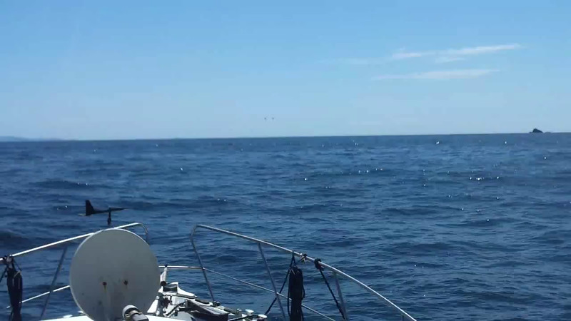 VIDEO<br /> <br /> circa 13:39....Dursey Island ahead, Skelligs to starboard, Cool Runnings and Snow Mouse to port...  Click he above image to view a 46 second video clip.<br /> <br /> When the video is 'Loaded' you will need to click on the 'Play' button to start the video playback.<br /> <br /> NOTE that viewing the video will cause another page to open in which the video will play. To return to the PhotoJournal click on the X at top right-hand corner of the video page  OR hit the 'Back' button on your browser.