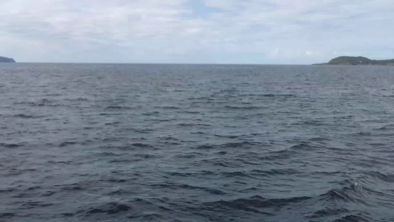 "VIDEO<br /> <br /> 11:36...click the above image to view a 41second video clip  of ""Arthur"" heading into Bantry Bay en-route to Glengarriff. <br /> <br /> When the video is 'Loaded' you will need to click on the 'Play' button to start the video playback.<br /> <br /> NOTE that viewing the video will cause another page to open in which the video will play. To return to the PhotoJournal click on the X at top right-hand corner of the video page  OR hit the 'Back' button on your browser."