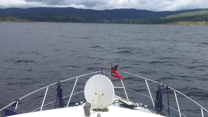 "VIDEO<br /> <br /> 13:09...click the above image to view a 28 second video clip  of ""Arthur"" on the approach to the entrance to Glengarriff Harbour. <br /> <br /> When the video is 'Loaded' you will need to click on the 'Play' button to start the video playback.<br /> <br /> NOTE that viewing the video will cause another page to open in which the video will play. To return to the PhotoJournal click on the X at top right-hand corner of the video page  OR hit the 'Back' button on your browser."