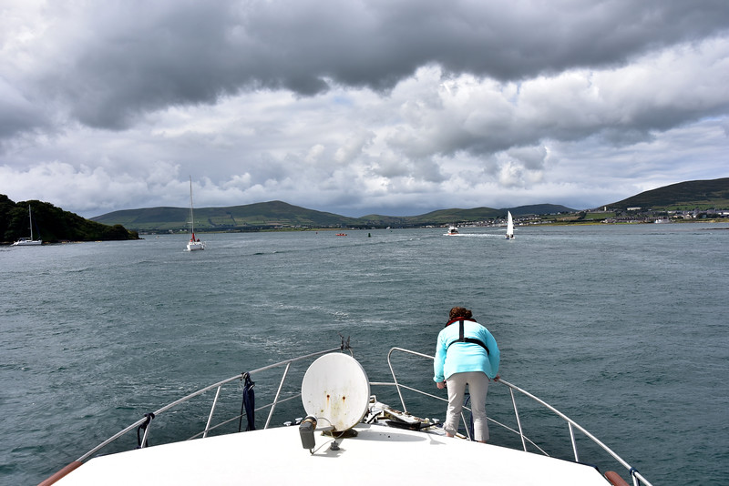 15:37... Arthur arrives in Dingle Harbour which, as usual, is bustling with activity on the water...cruisers and yachts, coming and going, and Dolphin discovery boats packed with tourists busily scanning the water for signs of Funghi!