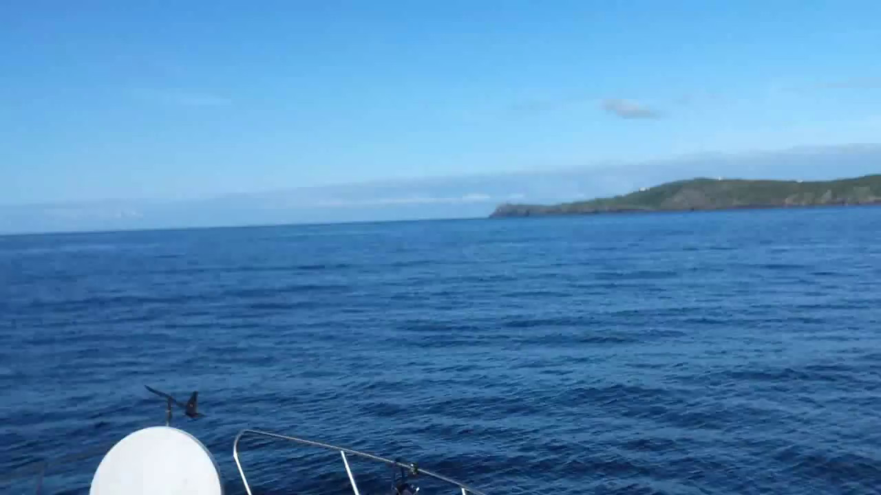 "VIDEO<br /> <br /> 09:28... click the above image to view a 17 second video clip  of ""Arthur"" heading down Bantry Bay. <br /> <br /> When the video is 'Loaded' you will need to click on the 'Play' button to start the video playback.<br /> <br /> NOTE that viewing the video will cause another page to open in which the video will play. To return to the PhotoJournal click on the X at top right-hand corner of the video page  OR hit the 'Back' button on your browser."