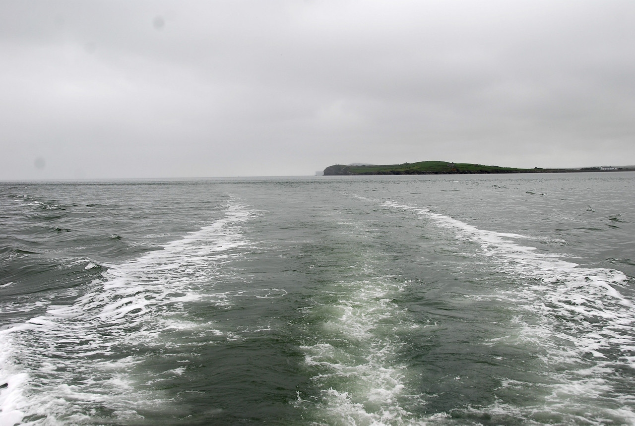 Looking back down the Shannon Estuary...Carrigaholt headland just visible in the background.