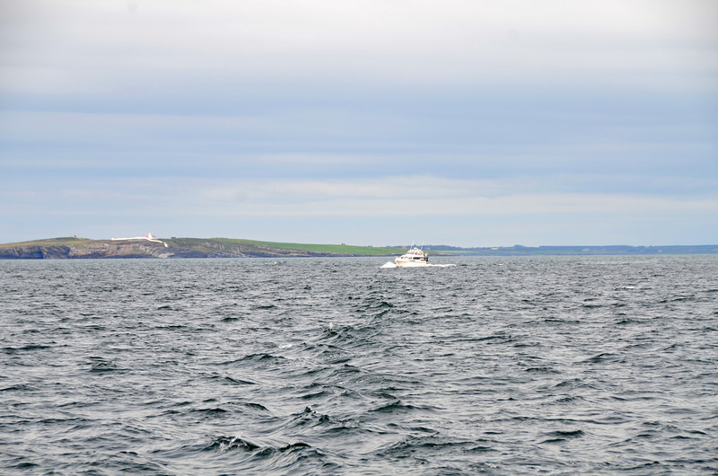 'Pantou Pao' in pursuit...she left Kilrush approx. 30 mins after we did but was not slow to catch up with us! Nice to have the company.