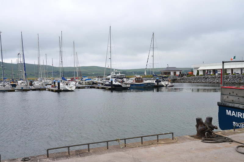 View of Dingle Marina from the town side.