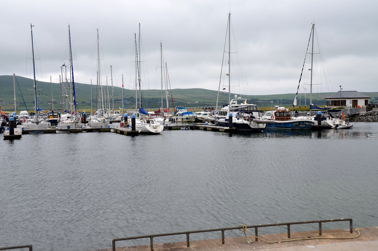 Dingle Marina. There is also a commercial harbour designated for fishing boats and Funghi sight-seeing boats.