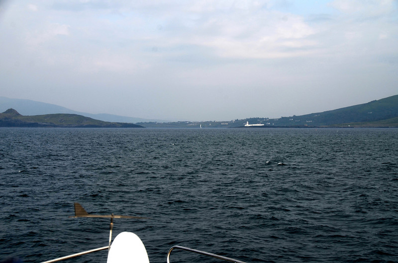 The approach to Valentia Harbour. Beginish Island to port...Cromwell Point Lighthouse to starboard.  And weather has disimproved... it is now overcast, raining...and visibility is poorer... :-(