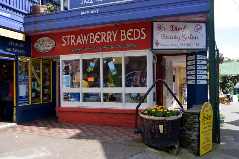 "Strawberry Beds...operated by one of Dingle's most famous residents...Nuala Moore, best known for open water swimming and ice swimming. But better known to Mary and me as a former student at RTCG/GMIT! <br /> <br /> Read more here: <a href=""https://en.wikipedia.org/wiki/Nuala_Moore"">https://en.wikipedia.org/wiki/Nuala_Moore</a>"
