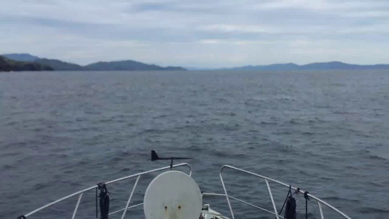 "VIDEO<br /> <br /> circa 17:30....click the above image to view a 51 second video clip as ""Arthur"" on Bantry Bay passing Black Ball Head. <br /> <br /> When the video is 'Loaded' you will need to click on the 'Play' button to start the video playback.<br /> <br /> NOTE that viewing the video will cause another page to open in which the video will play. To return to the PhotoJournal click on the X at top right-hand corner of the video page  OR hit the 'Back' button on your browser."