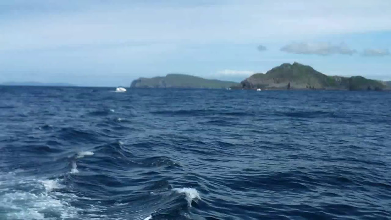 "VIDEO<br /> <br /> circa 13:57....DOLPHINS!...click the above image to view a 14 second video clip as ""Arthur"" heads for Valentia Head. <br /> <br /> When the video is 'Loaded' you will need to click on the 'Play' button to start the video playback.<br /> <br /> NOTE that viewing the video will cause another page to open in which the video will play. To return to the PhotoJournal click on the X at top right-hand corner of the video page  OR hit the 'Back' button on your browser."