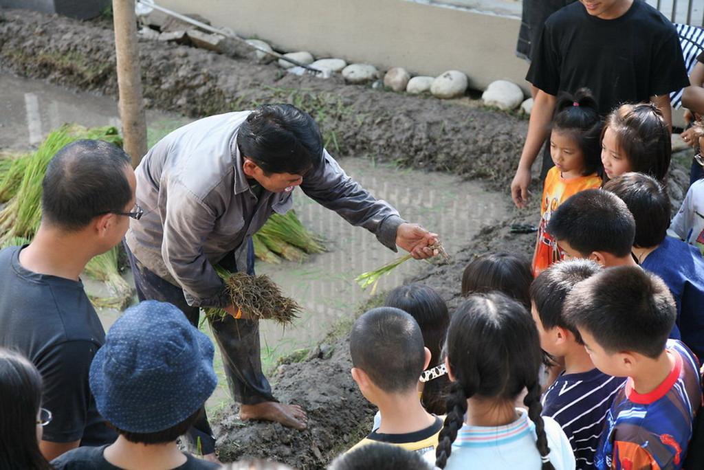 Ripe Project Village and Harvest Time, courtesy of Sakarin Krue-on