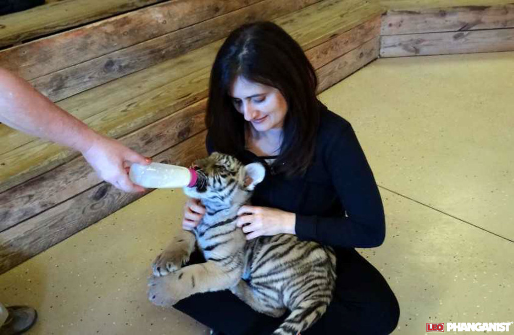 Kristen and baby tiger