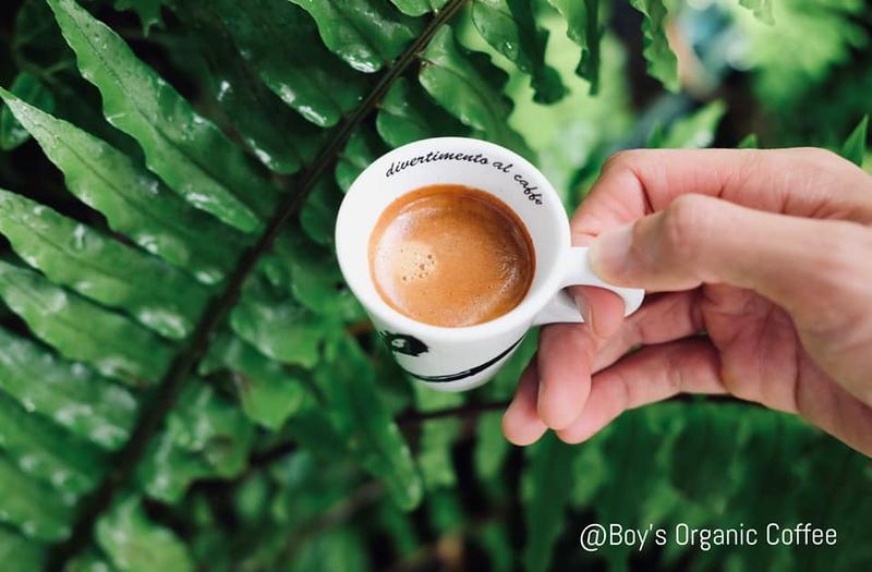 Boy's Organic Coffee