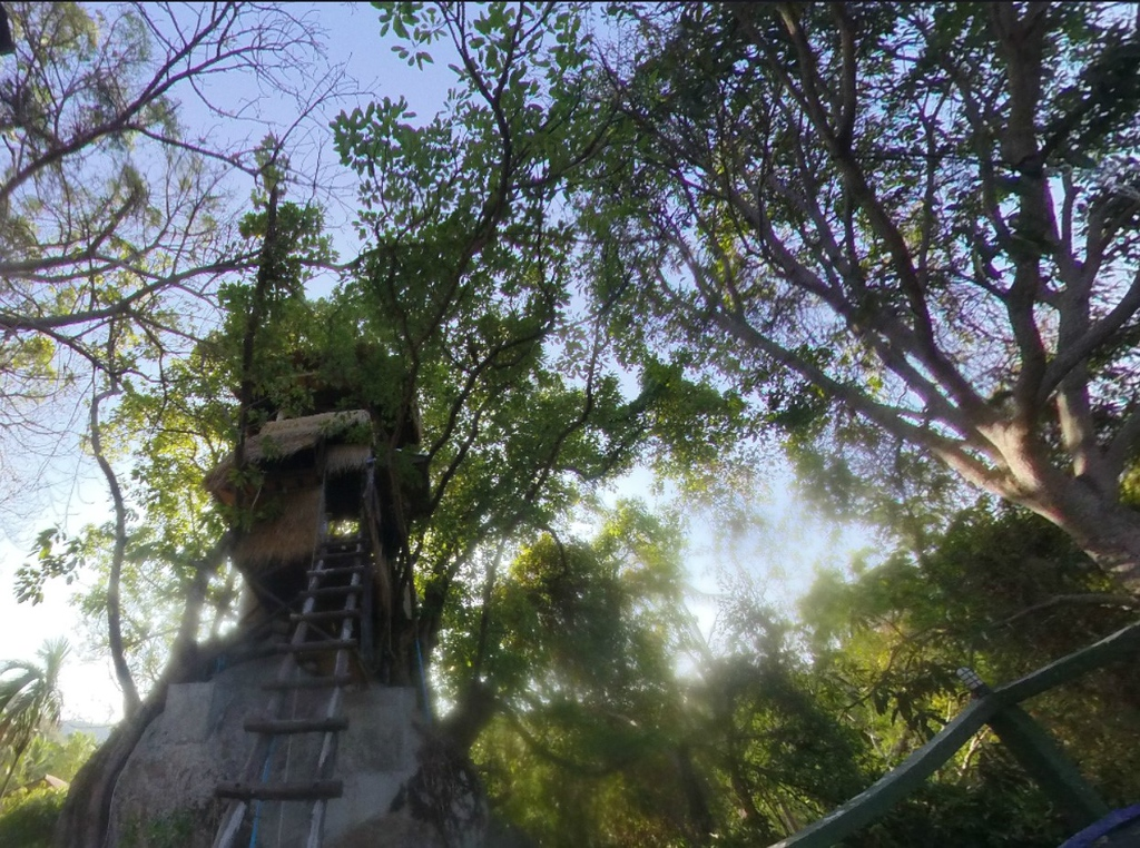 Treehouse Koh Phangan