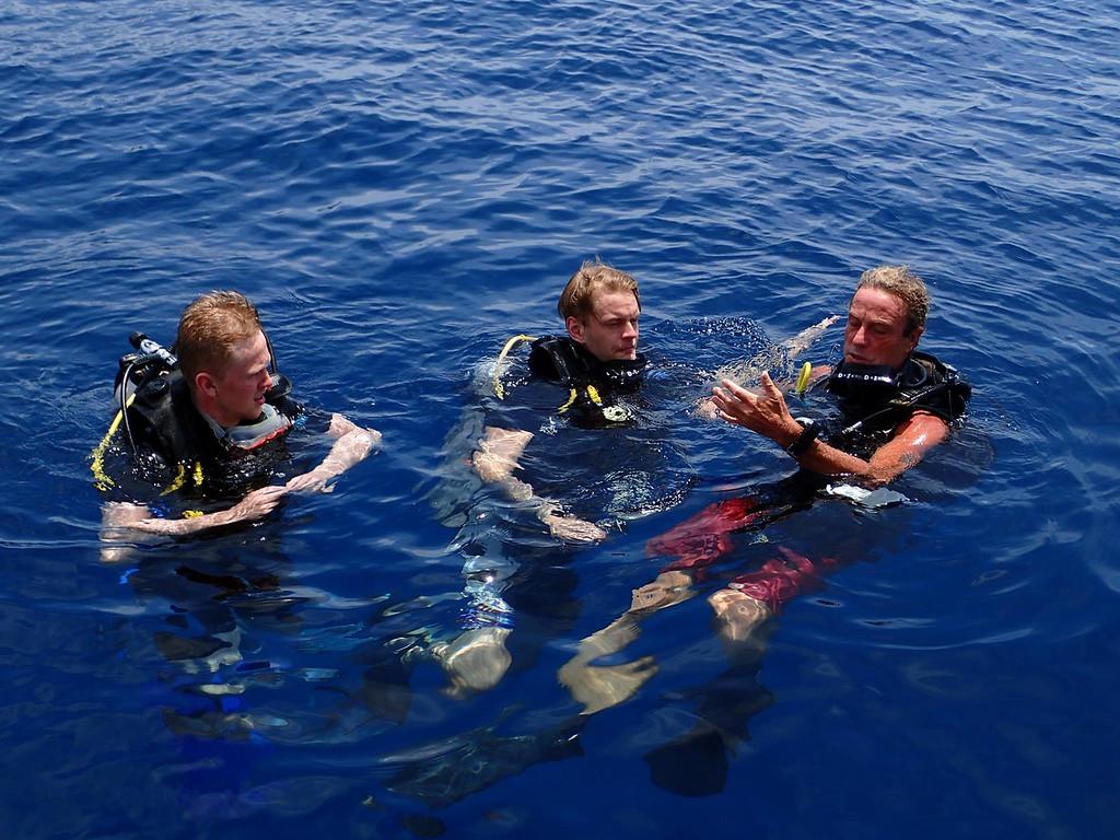 The Dive Inn