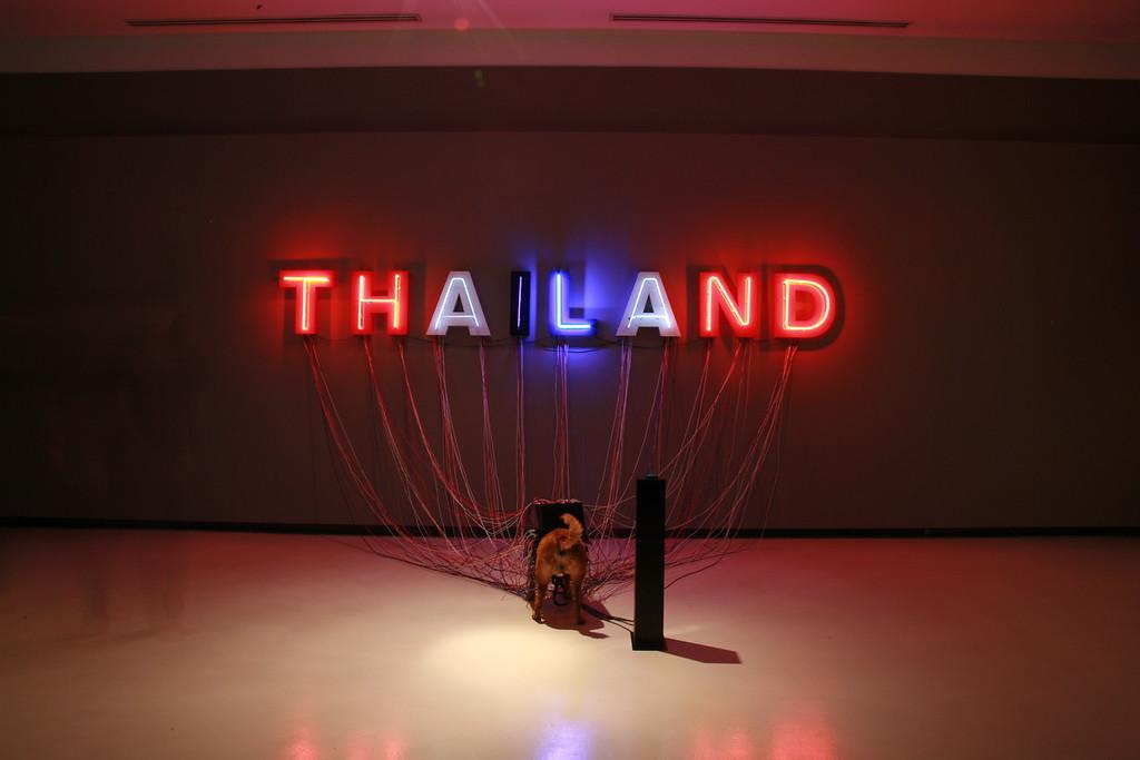 Wacharawut Punlawan, Thailand 2010, courtesy of the artists