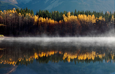 An Alberta blue sky, the mountains, the colors of autumn and a soft and subtle mist were all reflected in the stillness of the pond.
