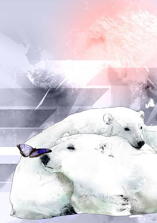 Ilustradores Ártico