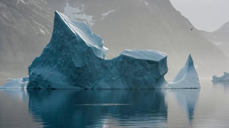 Video web, Lo que pasa en el Ártico no se queda en el Ártico