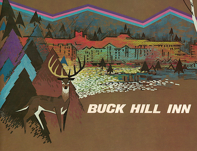 Buck Hill Inn Brochure
