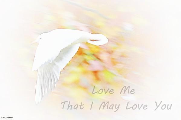 Love Me Bird