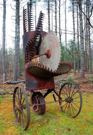 12.11.02 Field of Sculpture by Roger Majorowicz in Fall