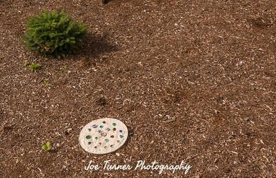 Artis_landscape_Aug_17-27