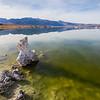 Mono Lake and Sierra Range