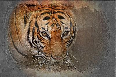 Tiger Left