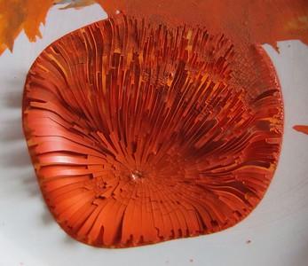 """Chrysanthemum"" of dried paint"