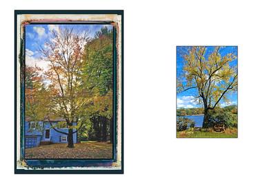 Paintings_18