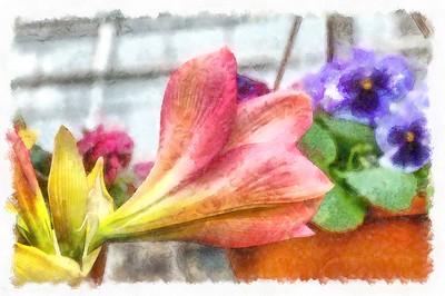 DSCF2436_DAP_Watercolor