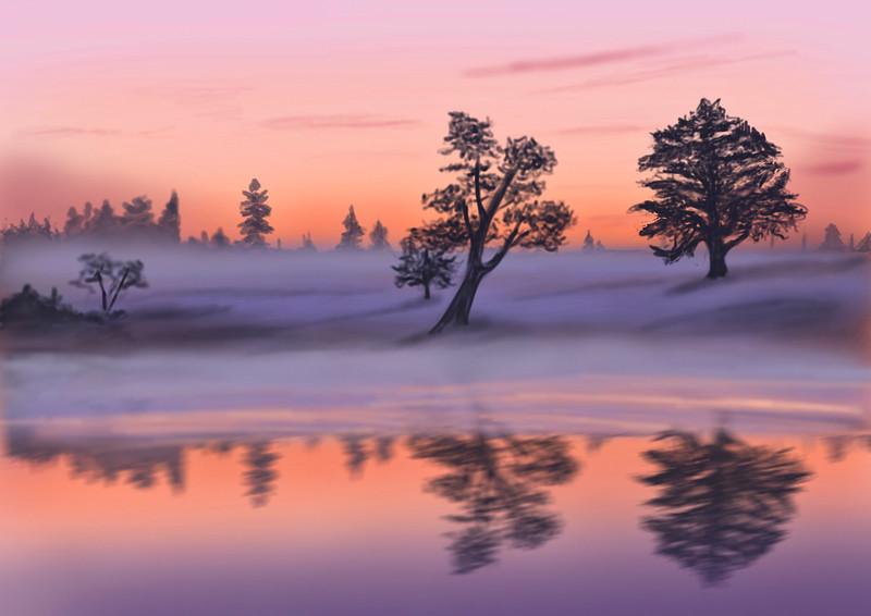 Sunset at the waterhole