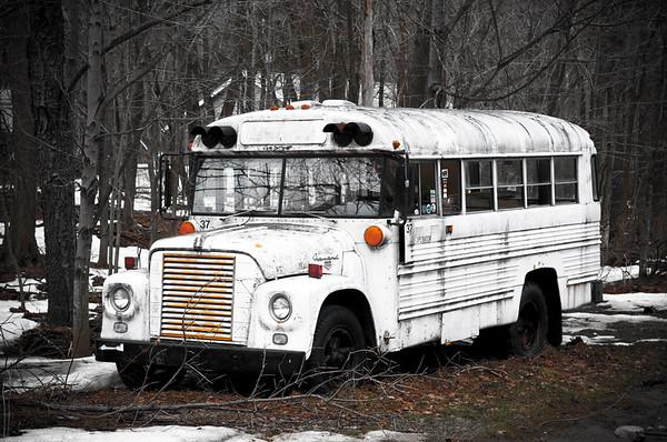 Phoenicia bus_2_20