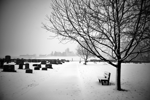 Peaceful in the Snow---Trappe, PA