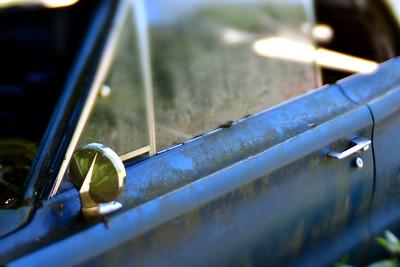 Abandoned Car Door