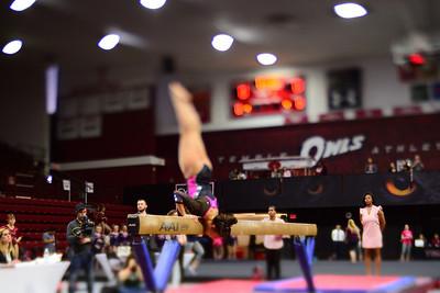 Gymnast---Philadelphia, PA