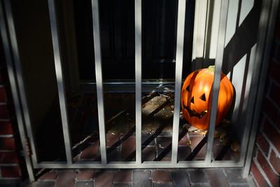 Safe Pumpkin---Philadelphia, PA