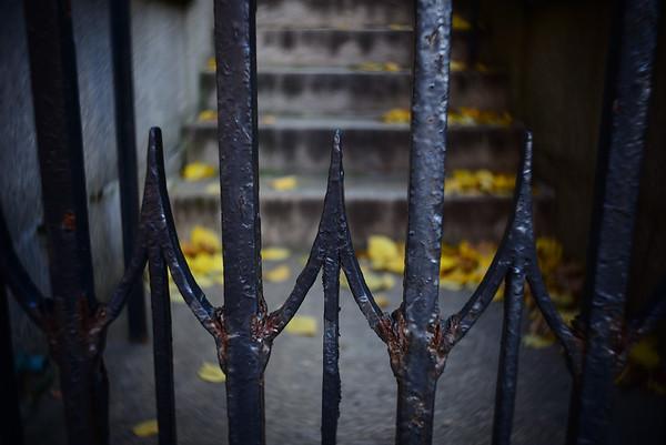 Gate Detail---Philadelphia, PA
