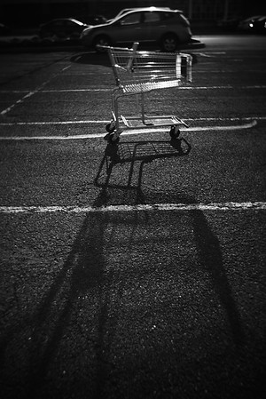Shopping Cart---Eagleville, PA