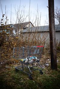 Shopping Cart---Nanticoke, PA