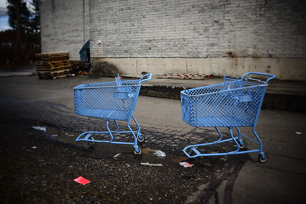 Carts---Hazleton, PA